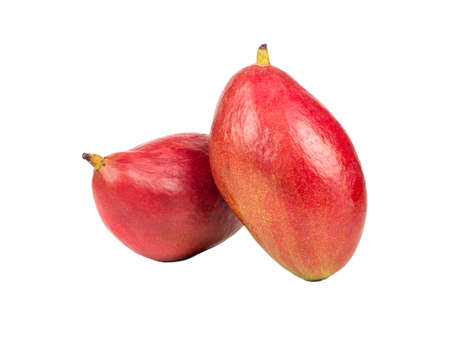 Two ripe red mango fruit isolated on a white background