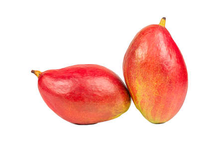 Two delicious red mango fruit isolated on a white background