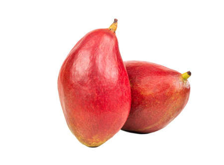 Two red mango fruit isolated on a white background