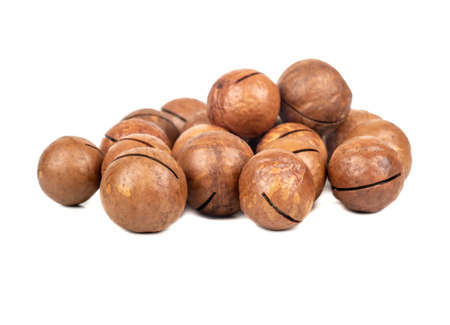 Pile of macadamia nuts in a shell on a white background