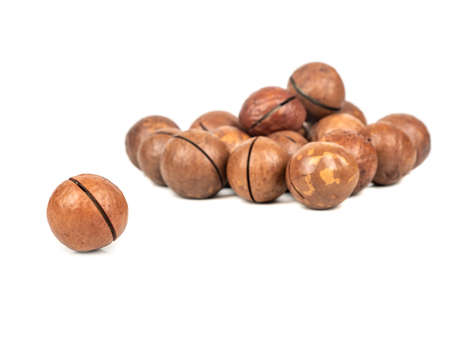 Single macadamia nut in a shell near a pile on a white background