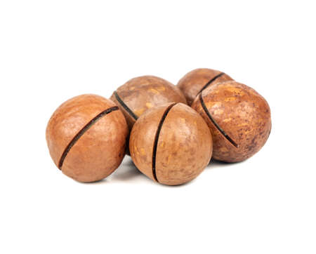 Several macadamia nuts on a white background 스톡 콘텐츠