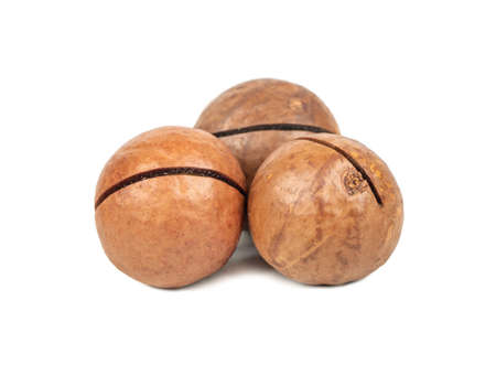 Three macadamia nuts in a shell isolated on a white background