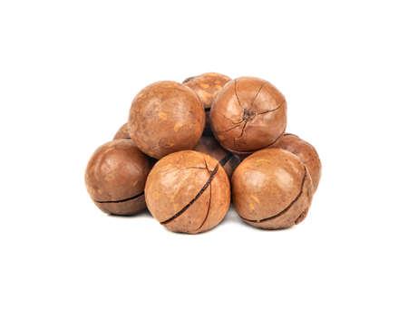 Small pile of macadamia nuts in a shell on a white background 스톡 콘텐츠