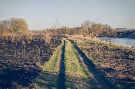 필드에서 타오르는 마른 잔디.
