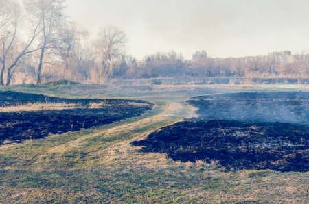The fire of dry grass in the field.