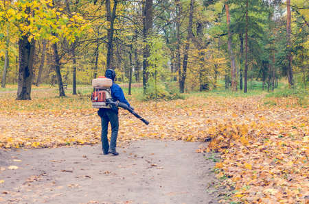In the autumn park worker removes the road from the fallen leaves with help. Stock Photo