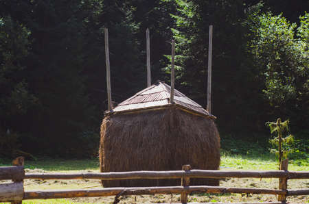 Rural summer landscape with a haystack on the background of the forest.