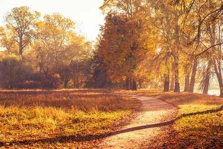 Chodnik w pięknym kolorowym jesiennym parku.
