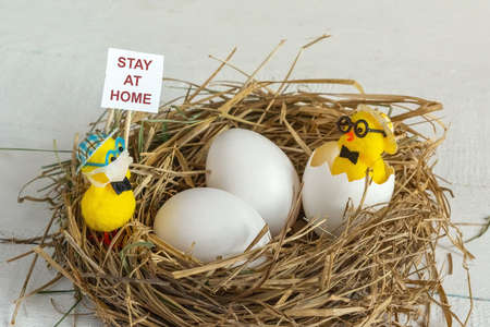 A toy chicken in a medical mask in a nest with a sign stay at home warns the eggs of danger. Coronavirus protection concept covid-19.