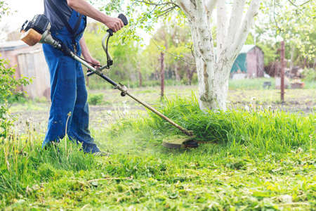 The gardener mows the grass with a trimmer in the spring garden. Zdjęcie Seryjne