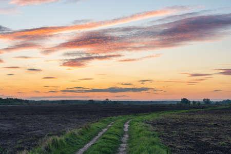 Dirt road in a rural field at sunset. Zdjęcie Seryjne