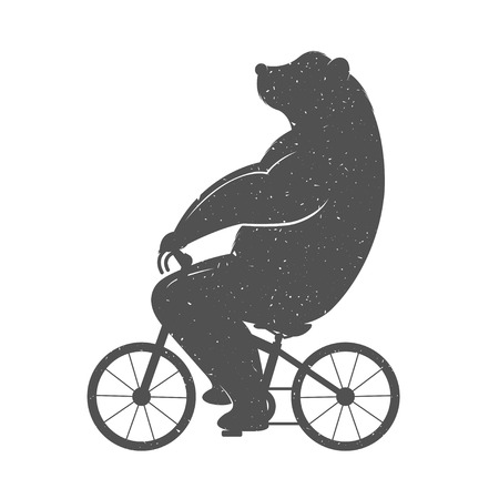 funny: Vintage Illustration bear on a bike with Grunge effect. Funny bear ride a bicycle on a white background for posters and T-shirts.