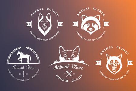 huskies: Conjunto de elementos para la tienda de mascotas, casa de mascotas, mascotas y animales ex�ticos cl�nica.