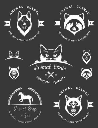 huskies: Conjunto de elementos de �poca para la tienda de mascotas, casa de mascotas, mascotas y animales ex�ticos cl�nica.
