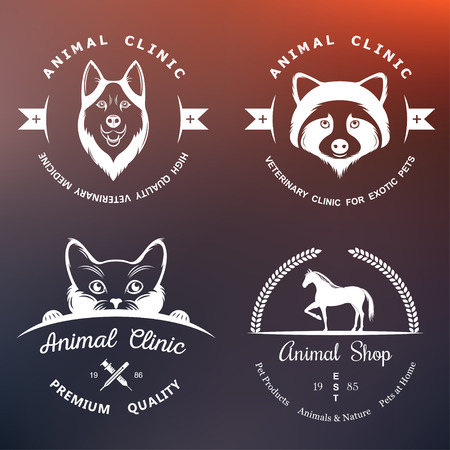 shop for animals: Set of vintage and elements for pet shop, pet house, pet and exotic animals clinic.
