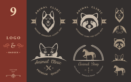 horse care: Set of vintage logo and logotype elements for pet shop, pet house, pet and exotic animals clinic. Illustration
