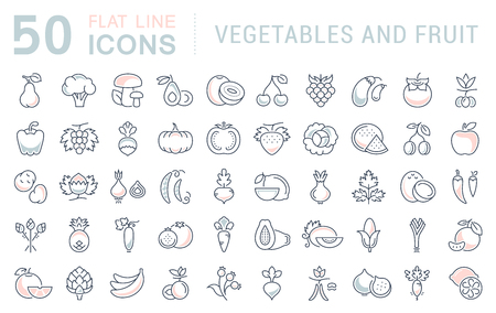 veggies: Set vector line icons in flat design Vegetable, Fruit and Healthy food with elements for mobile concepts and web apps. Collection modern infographic and pictogram. Illustration