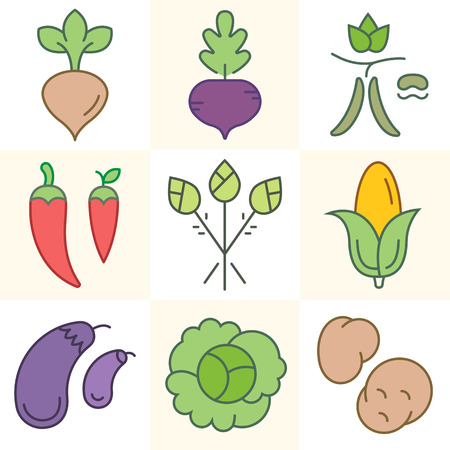 Set of colorful vegetables and greens icons. Vector illustration, isolated on white background. Çizim
