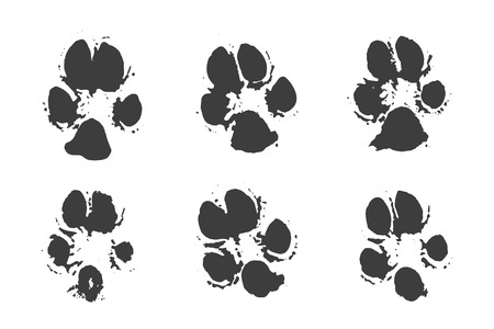 dog walking: Set of traces of animals and footprints. Black ink silhouettes of dog on white background in vector.