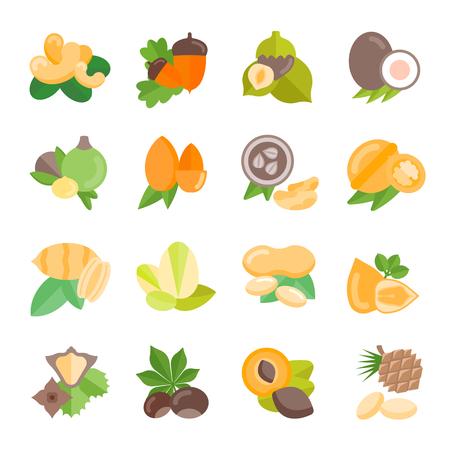Set vector illustration of nuts. Flat elements on white background