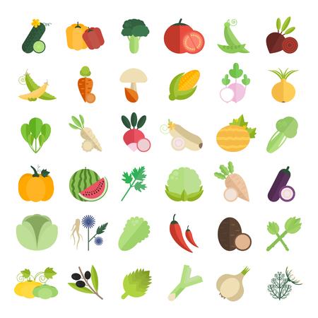 野菜のベクトル図を設定します。白い背景の平らな要素。