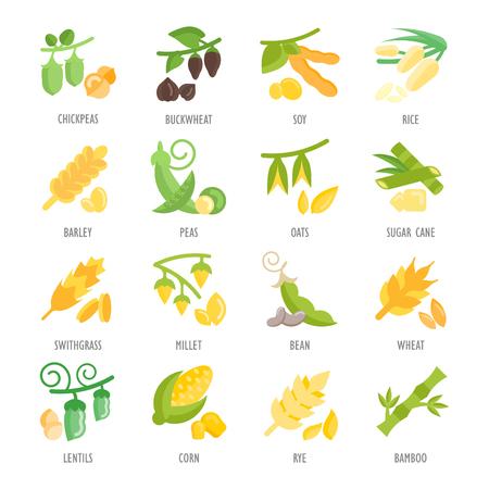 豆および穀物のアイコンのセットです。