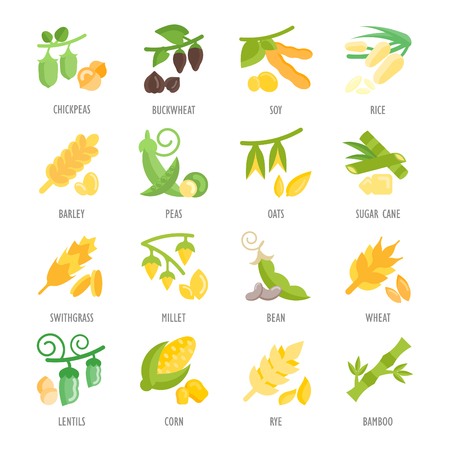 Set of beans and grains icons. Illustration