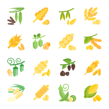Set vector illustration of groats. Flat elements on white background