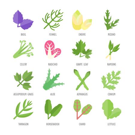 Impostare illustrazione vettoriale di verde. Elementi piatti su sfondo bianco.
