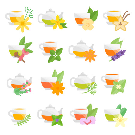 Set vector illustration of herbal tea. Flat elements on white background.