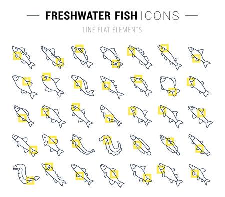 Satz der Vektorlinie Ikonen und Zeichen mit gelben Quadraten von Frischwasserfischen für ausgezeichnete Konzepte. Sammlung von Infografiken Logos und Piktogrammen. Standard-Bild - 90435206