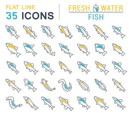 Satz Vektorlinie Ikonen, Zeichen und Symbole mit flachen Elementen von Frischwasserfischen für moderne Konzepte, Netz und apps. Sammlung von Infografiken Logos und Piktogrammen. Standard-Bild - 90435212