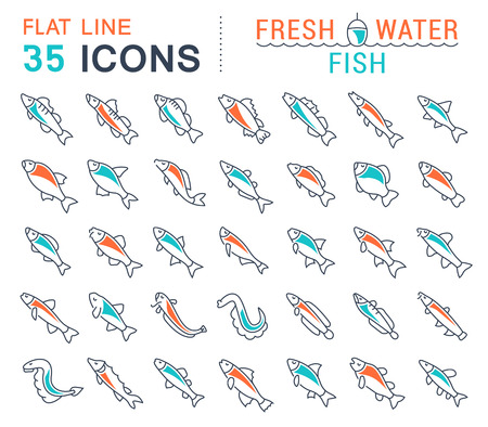 Set of vector line icons, sign and symbols with flat elements of freshwater fish for modern concepts, web and apps. Collection of infographics logos and pictograms.
