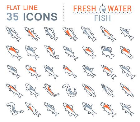 Satz Vektorlinie Ikonen, Zeichen und Symbole mit flachen Elementen von Frischwasserfischen für moderne Konzepte, Netz und apps. Sammlung von Infografiken Logos und Piktogrammen. Standard-Bild - 90435215