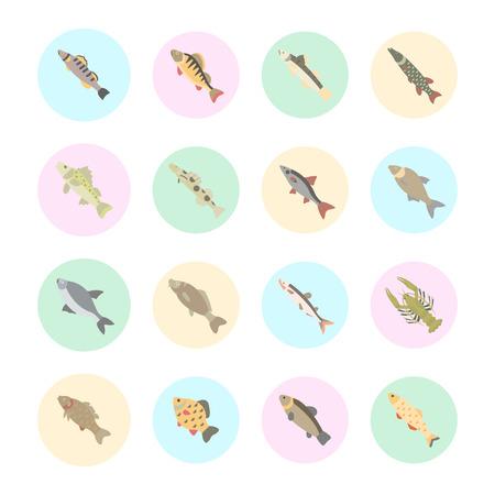 Set vector illustration of freshwater fish. Flat elements on white background. Stock Illustratie
