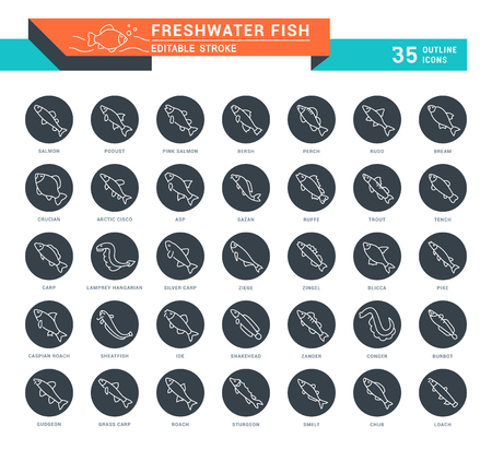 Set of outline white icons on black rounds of freshwater fish with names. Collection vector thin line signs. Simple linear pictogram pack for web graphics and apps. Illustration