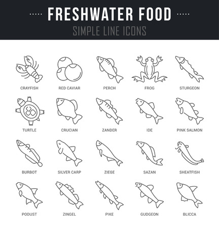 Set of outline signs and symbols of freshwater food with names. Collection vector thin line icons and infographics elements. Simple linear pictogram pack for web graphics and apps. Çizim