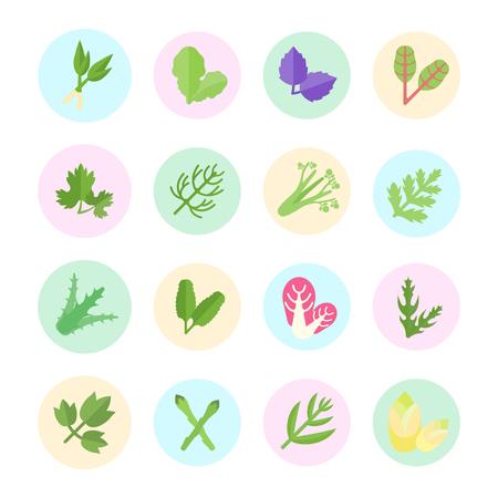 Set vector illustratie van groen. Vlakke elementen op een witte achtergrond.