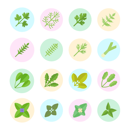 Set vector illustration of greenery. Flat elements on white background.