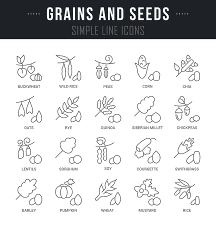 Set of outline signs and symbols of grains and seeds with names. Collection vector thin line icons and infographics elements. Simple linear pictogram pack for web graphics and apps. Illustration