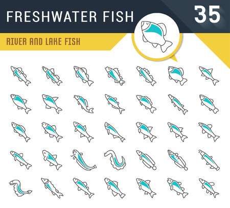 Set of vector line icons, sign and symbols of freshwater fish for modern concepts, web and apps. Collection of infographics logos and pictograms. Çizim