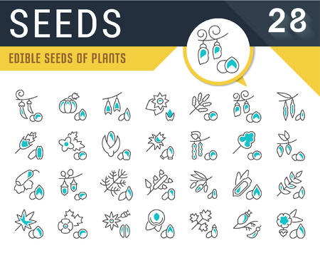Set of vector line icons, sign and symbols of seeds for modern concepts, web and apps. Collection of infographics logos and pictograms.