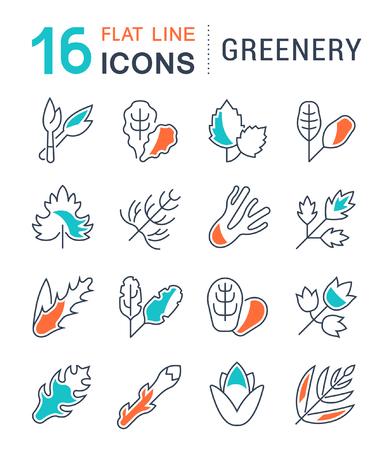 Set van vector lijn iconen, teken en symbolen met platte elementen van groen voor moderne concepten, web en apps. Verzameling van infographics logo's en pictogrammen.