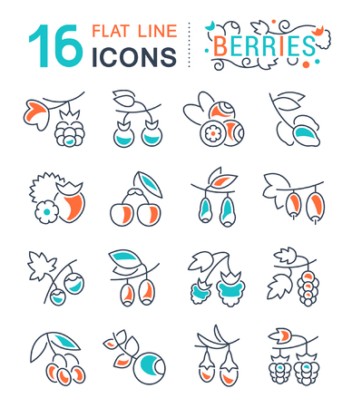 Set of vector line icons, sign and symbols with flat elements of berries for modern concepts, web and apps. Collection of infographics logos and pictograms.