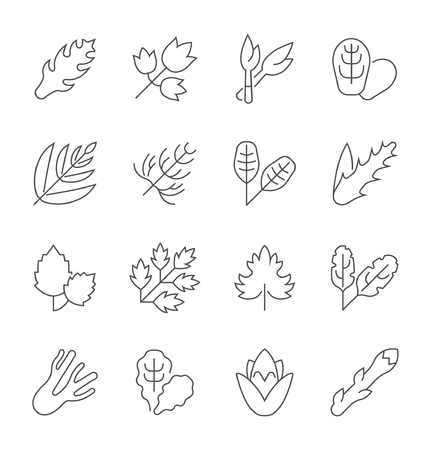 Collection of line gray icons of greenery. Set of vector simple concepts for creative projects and apps. Info graphics elements and pictograms. Stock Illustratie