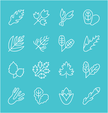 Collection of line white icons of greenery. Set of simple elements with bold outlines on a color background. Info graphics signs and pictograms.