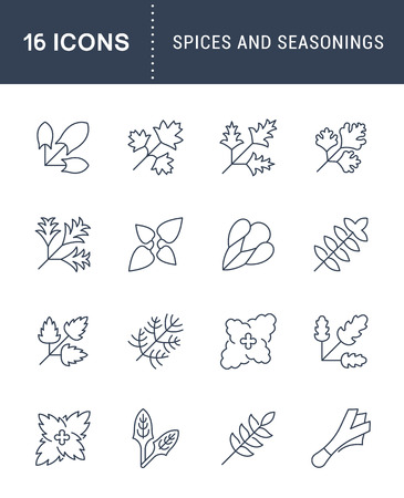 Set of spices and seasonings flat line icon illustration.