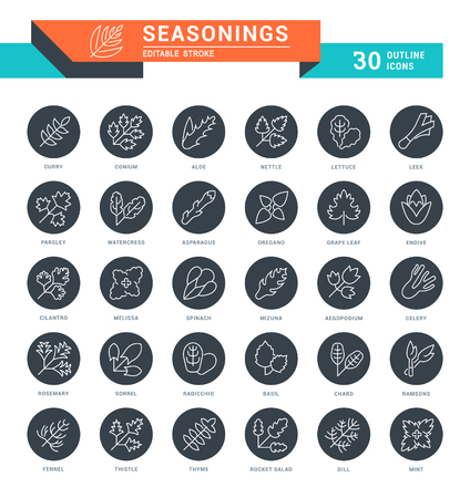 Set of spices and seasonings flat line icons with labels.