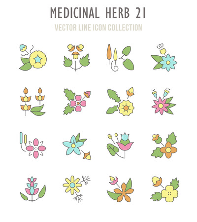 Collection vector flat icons with thin line elements. Set of modern, clean, outline signs, symbol and vector art of medicinal herb. Simple linear infographic and pictogram series for web. Vectores